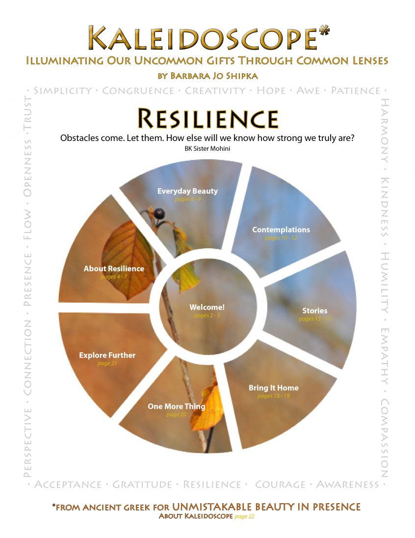 2016 Resilience cover