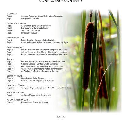 congruence-contentsjpg