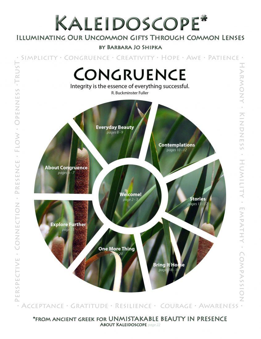 congruence-cover