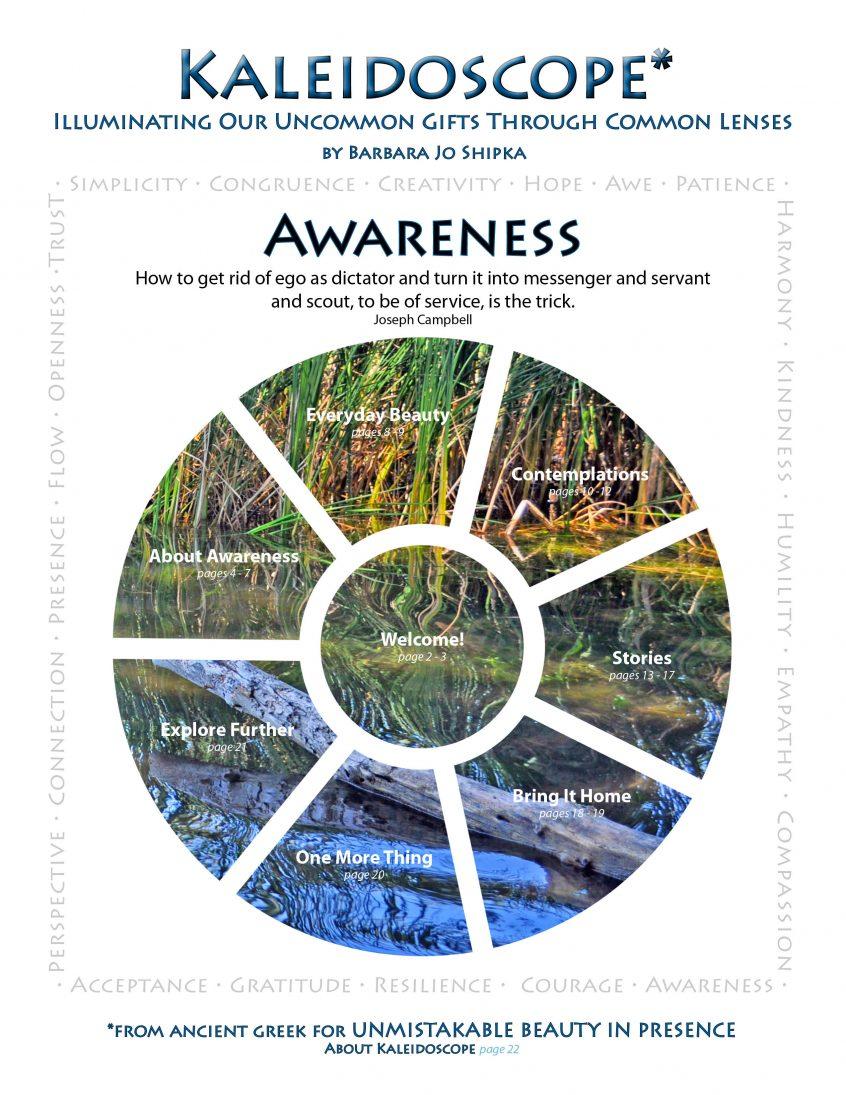 awareness-cover