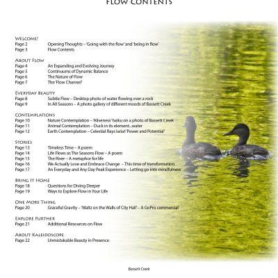 flow-contents