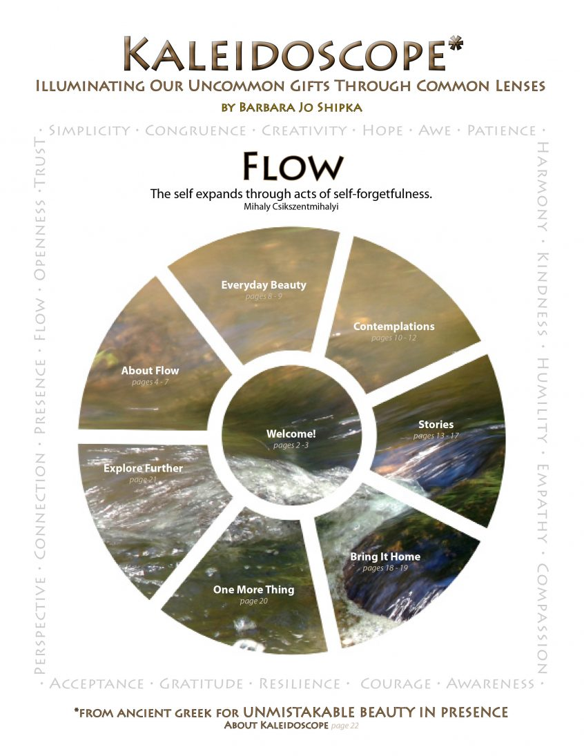 flow-cover