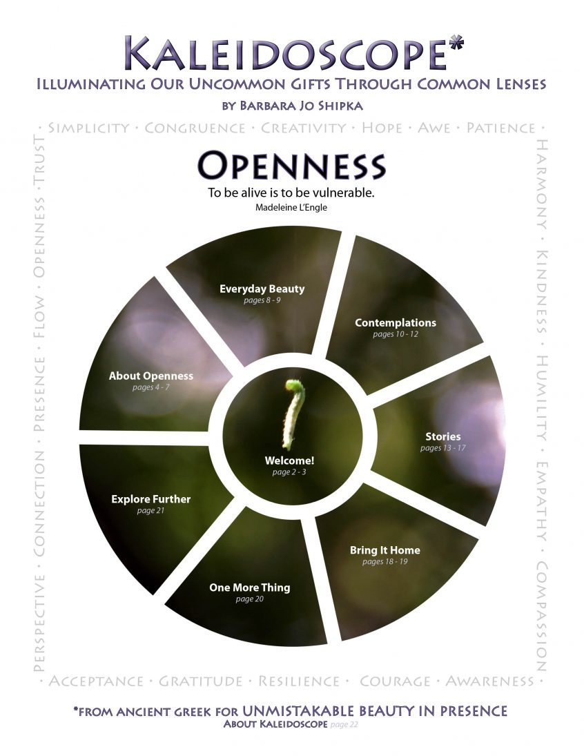 openess-cover